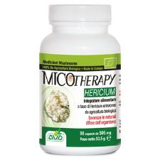MICOTHERAPY hericum 90 capsule